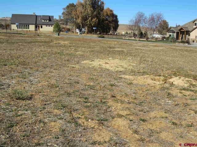 Lot 8 (TBD) Mancos Lane, Montrose, CO 81401 (MLS #776208) :: The Dawn Howe Group   Keller Williams Colorado West Realty