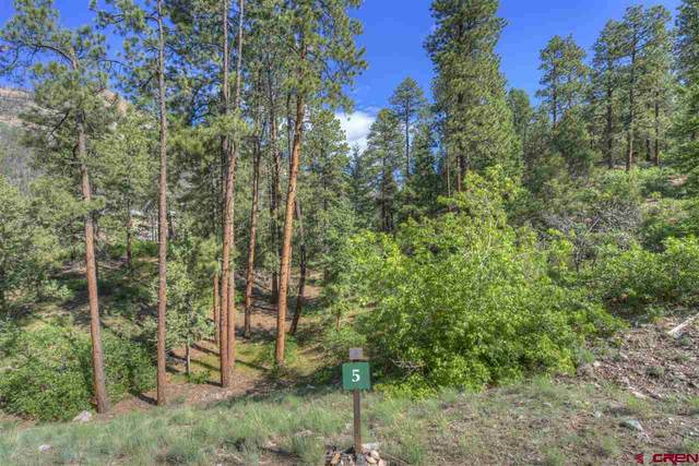 242 Glacier Cliff, Durango, CO 81301 (MLS #776311) :: Durango Mountain Realty