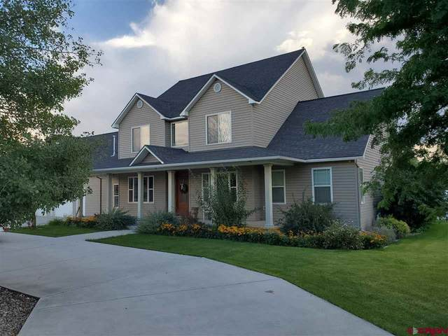 67191 Omar Court, Montrose, CO 81401 (MLS #776418) :: The Dawn Howe Group | Keller Williams Colorado West Realty