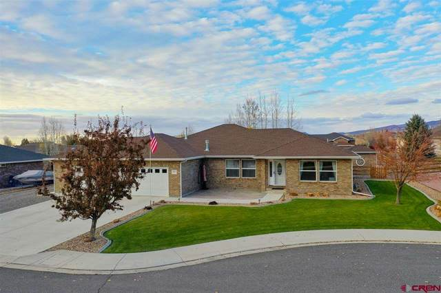 3017 Paintbrush Way, Montrose, CO 81401 (MLS #776452) :: The Dawn Howe Group | Keller Williams Colorado West Realty