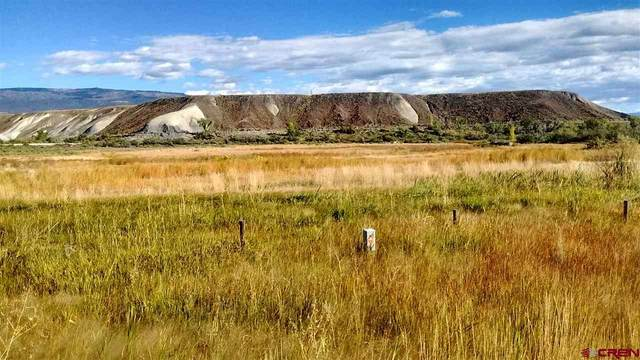 1259 50 Highway, Delta, CO 81416 (MLS #776473) :: The Dawn Howe Group | Keller Williams Colorado West Realty