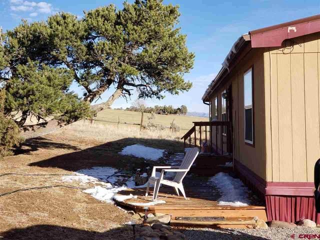 3182 County Road 510, Ignacio, CO 81137 (MLS #776592) :: The Dawn Howe Group | Keller Williams Colorado West Realty