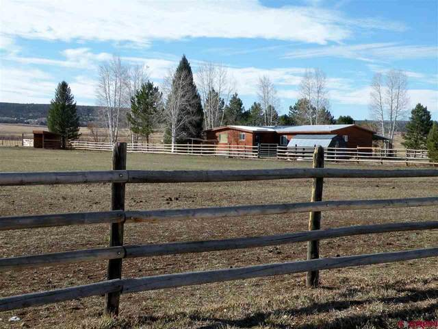 74 Skalla Road, Norwood, CO 81423 (MLS #776636) :: The Dawn Howe Group | Keller Williams Colorado West Realty