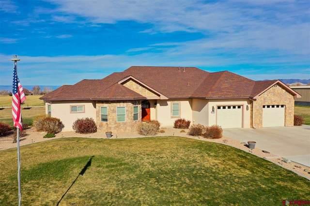 62205 Oleander Circle, Montrose, CO 81403 (MLS #776698) :: The Dawn Howe Group | Keller Williams Colorado West Realty