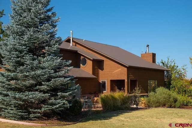 482 Wageman Rd, Durango, CO 81303 (MLS #776712) :: Durango Mountain Realty