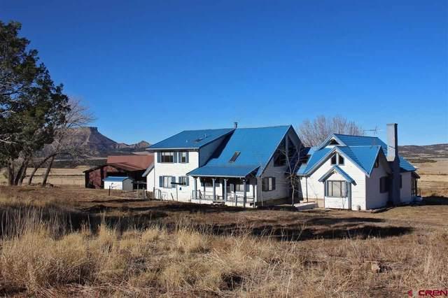 38861 Highway 160, Mancos, CO 81328 (MLS #776715) :: The Dawn Howe Group | Keller Williams Colorado West Realty