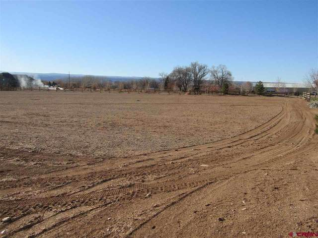 Lot: 3 6260 Road, Montrose, CO 81403 (MLS #776757) :: The Dawn Howe Group   Keller Williams Colorado West Realty