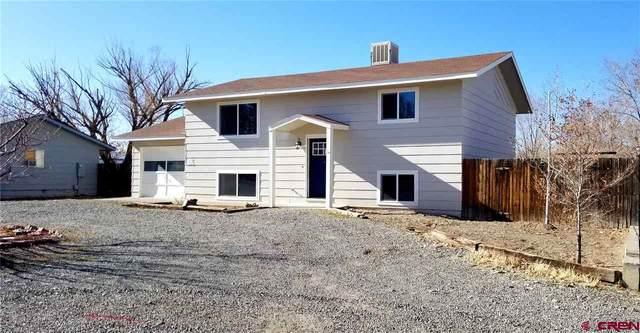 545 Labor Street, Delta, CO 81416 (MLS #776782) :: The Dawn Howe Group | Keller Williams Colorado West Realty