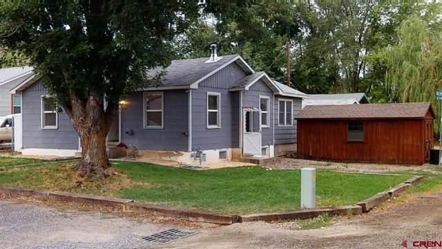 120 Clark Avenue, Paonia, CO 81428 (MLS #776887) :: The Dawn Howe Group | Keller Williams Colorado West Realty
