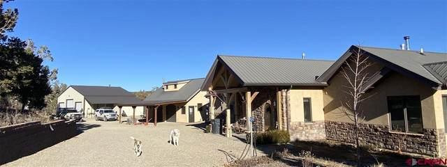 36087 Road K.3, Mancos, CO 81328 (MLS #776915) :: The Dawn Howe Group | Keller Williams Colorado West Realty
