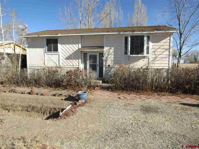 528 Henderson Road, Monte Vista, CO 81144 (MLS #776958) :: The Dawn Howe Group | Keller Williams Colorado West Realty