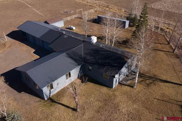 194 Carlile Drive, Durango, CO 81301 (MLS #777012) :: The Dawn Howe Group | Keller Williams Colorado West Realty