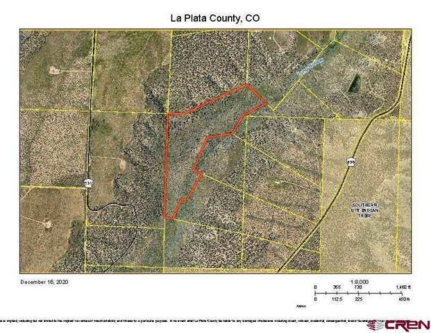 CR 136 SW Tbd, Hesperus, CO 81326 (MLS #777113) :: Durango Mountain Realty