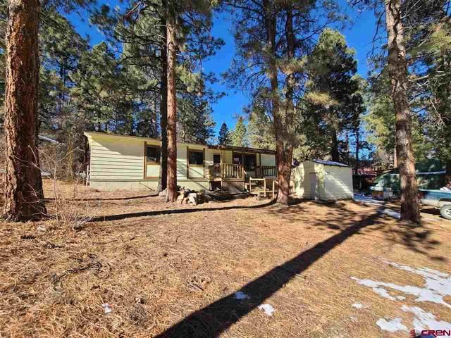 71 Holly Hock, Durango, CO 81303 (MLS #777262) :: Durango Mountain Realty