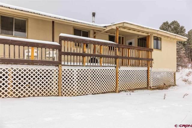 43323 Road J.9 Loop, Mancos, CO 81328 (MLS #777330) :: The Dawn Howe Group | Keller Williams Colorado West Realty