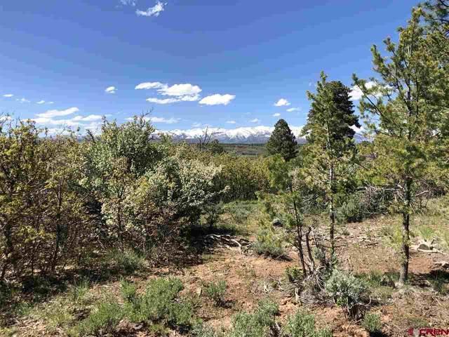 8322 Cr 141, Hesperus, CO 81326 (MLS #777420) :: Durango Mountain Realty