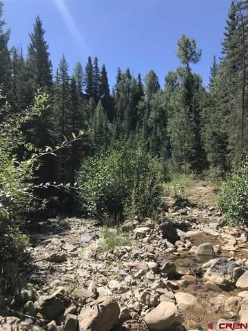 96,116,124,154 Sierra Verde Road, Durango, CO 81301 (MLS #777451) :: The Dawn Howe Group   Keller Williams Colorado West Realty
