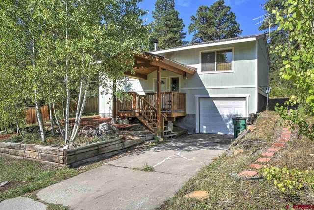 74 Ponderosa Trail, Durango, CO 81303 (MLS #777459) :: Durango Mountain Realty