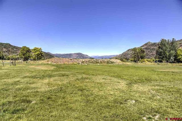 3078 County Road 203, Durango, CO 81301 (MLS #777474) :: Durango Mountain Realty