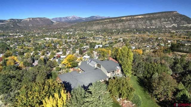 523 County Road 239, Durango, CO 81301 (MLS #777482) :: Durango Mountain Realty