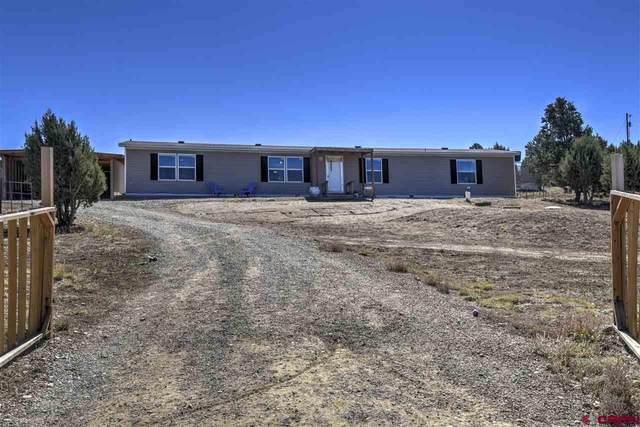 290 South Ridge Cir, Bayfield, CO 81122 (MLS #777489) :: The Dawn Howe Group | Keller Williams Colorado West Realty