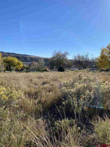 484 Bodo Drive, Durango, CO 81301 (MLS #777493) :: Durango Mountain Realty