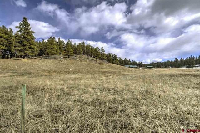TBD Beaver Creek Drive, Bayfield, CO 81122 (MLS #777502) :: The Dawn Howe Group | Keller Williams Colorado West Realty