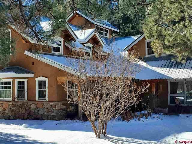 2421 Cr 204, Durango, CO 81301 (MLS #777520) :: Durango Mountain Realty