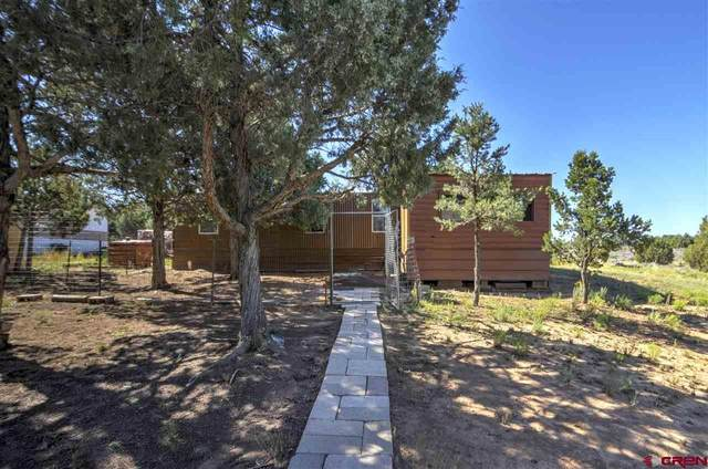 255 Mesa Drive, Ignacio, CO 81137 (MLS #777524) :: The Dawn Howe Group | Keller Williams Colorado West Realty