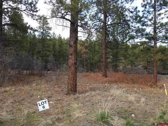 93 Canyon Pines (Lot 6) Place, Durango, CO 81301 (MLS #777537) :: Durango Mountain Realty