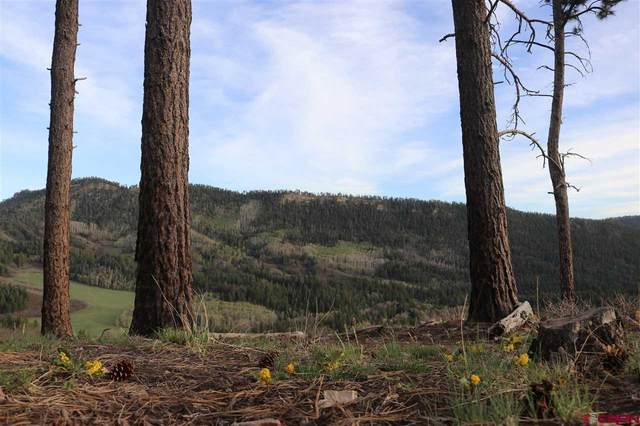 671 Aspen Drive, Durango, CO 81301 (MLS #777600) :: Durango Mountain Realty