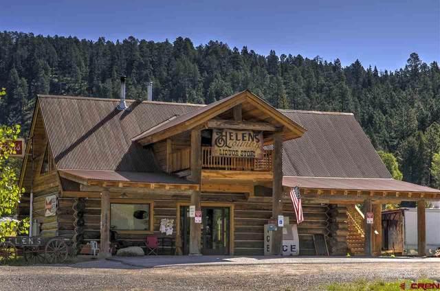 13980 County Road 240, Durango, CO 81301 (MLS #777601) :: Durango Mountain Realty