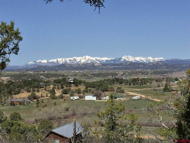 39 Valley Place, Durango, CO 81301 (MLS #777606) :: Durango Mountain Realty