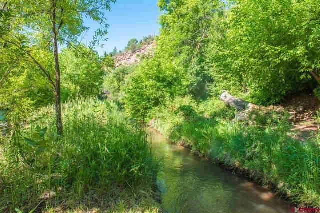 4351 Cr 203, Durango, CO 81301 (MLS #777716) :: Durango Mountain Realty