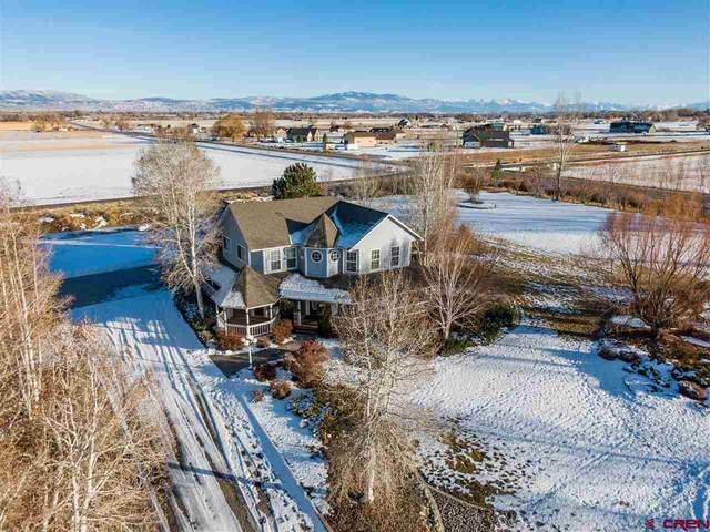 13950 Larkspur Drive, Montrose, CO 81403 (MLS #777735) :: The Dawn Howe Group | Keller Williams Colorado West Realty