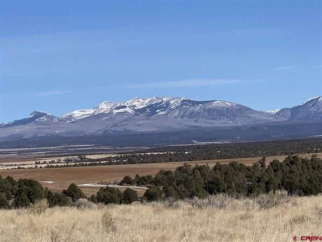 TBD County Road 100, Hesperus, CO 81326 (MLS #777736) :: Durango Mountain Realty
