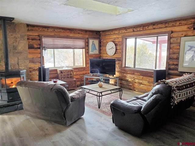 29022 E Hwy 160, Durango, CO 81303 (MLS #777803) :: Durango Mountain Realty
