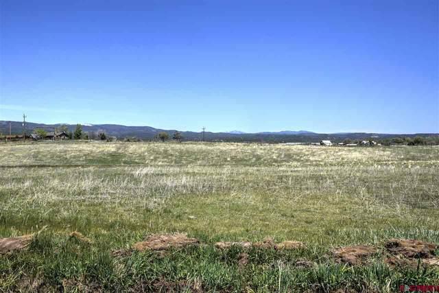 354 County Road 229, Durango, CO 81301 (MLS #777832) :: Durango Mountain Realty
