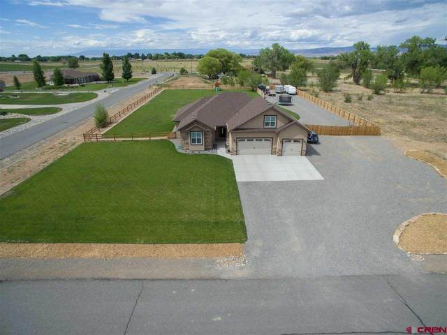 63101 Percheron Court, Montrose, CO 81403 (MLS #777840) :: The Dawn Howe Group | Keller Williams Colorado West Realty