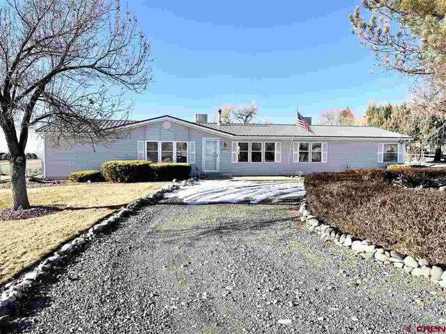 66215 Largo Lane, Montrose, CO 81401 (MLS #777916) :: The Dawn Howe Group | Keller Williams Colorado West Realty