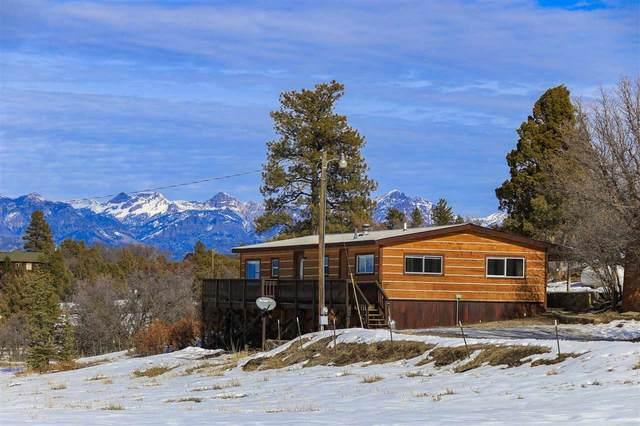 1520 Meadows Drive, Pagosa Springs, CO 81147 (MLS #778018) :: The Dawn Howe Group   Keller Williams Colorado West Realty