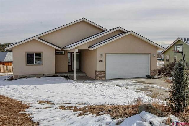 66 Homestead Circle, Bayfield, CO 81122 (MLS #778027) :: The Dawn Howe Group | Keller Williams Colorado West Realty