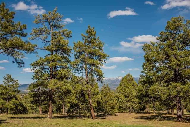 122 Yarrow Circle, Pagosa Springs, CO 81147 (MLS #778143) :: The Dawn Howe Group   Keller Williams Colorado West Realty