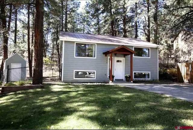 144 Timber Drive, Durango, CO 81303 (MLS #778231) :: Durango Mountain Realty