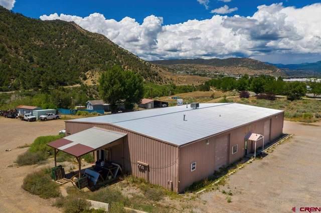 1163 Dominguez Drive, Durango, CO 81303 (MLS #778314) :: Durango Mountain Realty