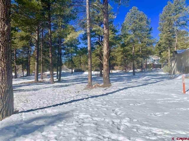 230 Hay Barn Road, Durango, CO 81301 (MLS #778363) :: Durango Mountain Realty
