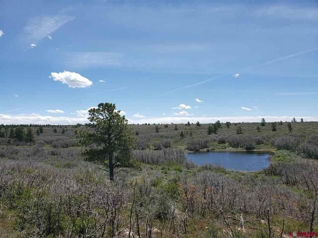 3693 Road 9.4 Secret Canyon Lt 21, Dove Creek, CO 81324 (MLS #778395) :: The Dawn Howe Group | Keller Williams Colorado West Realty