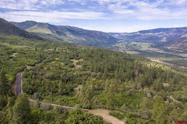 4113 Elkhorn Mountain Road, Durango, CO 81301 (MLS #778397) :: Durango Mountain Realty