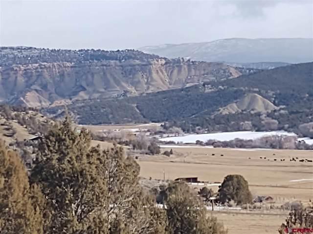 27226 Cactus Park Road, Cedaredge, CO 81413 (MLS #778433) :: The Dawn Howe Group | Keller Williams Colorado West Realty