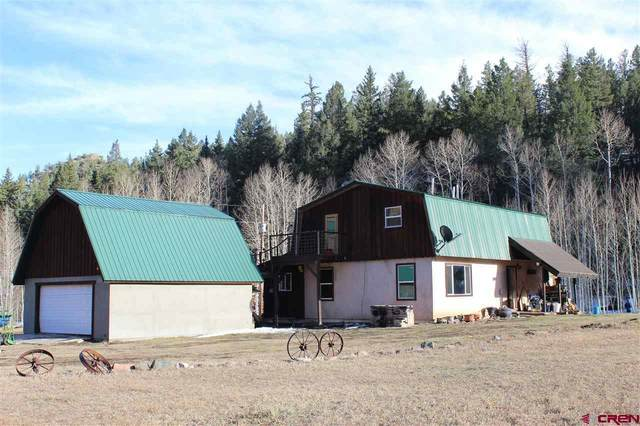 11381 Castle Rock Road, Del Norte, CO 81132 (MLS #778476) :: The Dawn Howe Group   Keller Williams Colorado West Realty